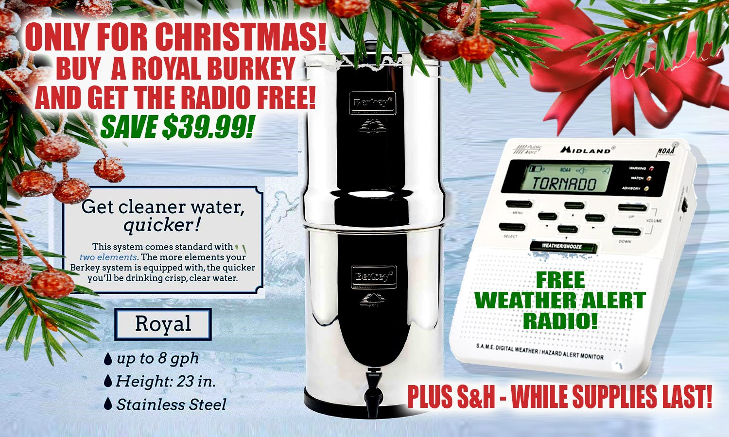royal-burkey-and-radio-christmas-special