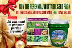 christmas-offer-perennial-vegetables